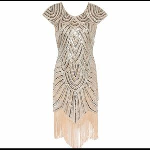 20's Style Sequin and Fringe Dress